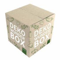 NMS0424_063516_Deko_Wunder_Box_Karton